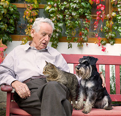 senior resting with pets